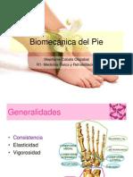 biomecanicapie-130324204305-phpapp01(1)
