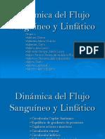 Dinámica del Flujo Sanguíneo y Linfático.ppt