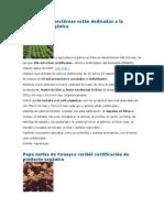 450 ha agricultura orgánica