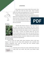 analisis pribadi mengenai Injeksi Atropin Sulfat