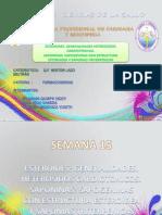 SEMANA 15.pptx