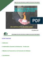 5 HIDRATOS DE GAS  AP_Perforación