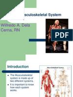 82274861 Musculoskeletal System Wawit