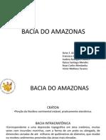 Bacia Do Amazonas