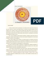 Fluidoterapi1.docx