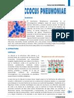 s.pneumoniae