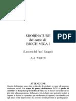 Sbobinature Biochimica I - Raugei