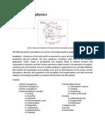 Outline of Geophysics