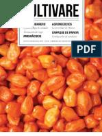 1. Picudo, Plaga de Cuidado_Cultivare (1)2013