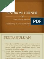 Sindrom Turner
