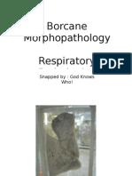 BorcaneRespiratory