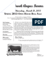 Claybrook Bull Flyer-UPDATED