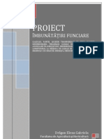 Calcule Proiect If