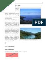 Anexo:Peces de Chile