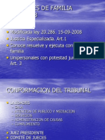 Tribunales de Familia.2009