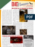SBENoticias_246