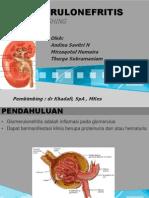 Refreshing Glomerulonefritis 2
