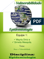 Seminário Epidemiologia - Tema Risco e Vulnerabilidade - 04.06.2013