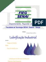 Lubrifica__o Industrial Fatec Senai Rm