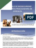 Protocolo de Bioseguridad en La Planta Procesadora De