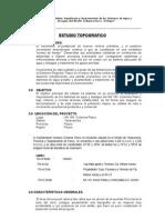 Informe Topografico Columna