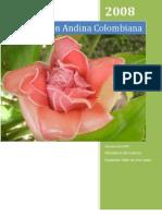 Regin Andina Colombiana