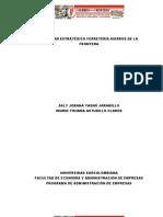 1er Informe Plan Hierros (4)