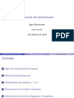 Determinant Def Presentation Es