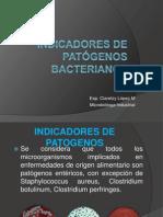 Indicadores de Patogenos Bacterianos