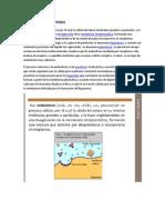 2bch Bio Endocitosis