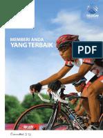 Report Telkom 2008