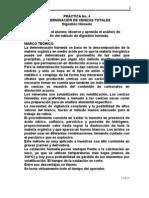 determinacion de cenizas (digestion húmeda)