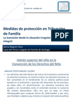 clasemedidasdeprotecciongnegroni-091018173443-phpapp02