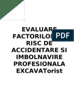 EVALUARE-EXCAVATORIST
