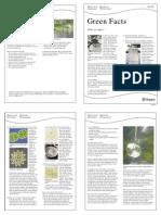 Algae - What 2 Page