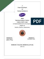 Cadbury (Marketing)