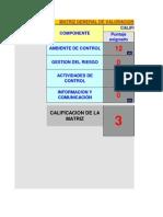 Matriz de Valoracion de Riesgos Por Componentes Del Coso 1