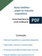 Satte Litte Cell Saul A