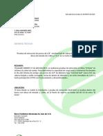 RTP Pruebas Extraccion Sist 14 Notched Bolt Fertinal
