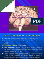 6ta Clase Neuro - Tronco Encefalico - Dr. Enriquez