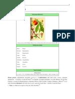 Prunus persica.pdf