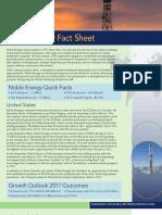NBL Fact Sheet YE2012