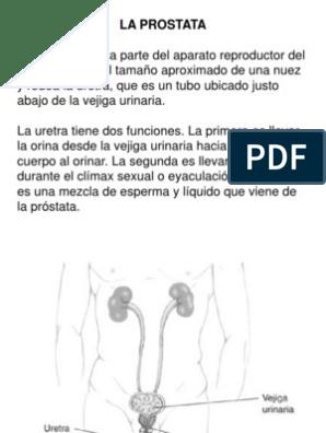 próstata agrandada dos corrientes de orina