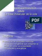 labasemoleculardelavida1-100619124125-phpapp02