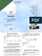 Matrices Upla