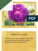 FragrantFlowersRan.pdf