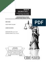 Revista de Derecho 2009 Para PDF