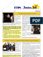 Newsletter Decembrie 2008 RO