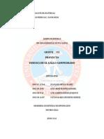 Proyecto Video Club El Gallo Sampedrano.pdf