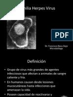08 - 1 Herpes Virus